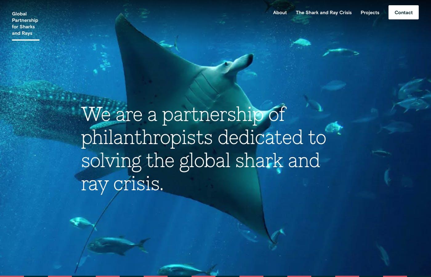 Global Partnership for Sharks and Rays