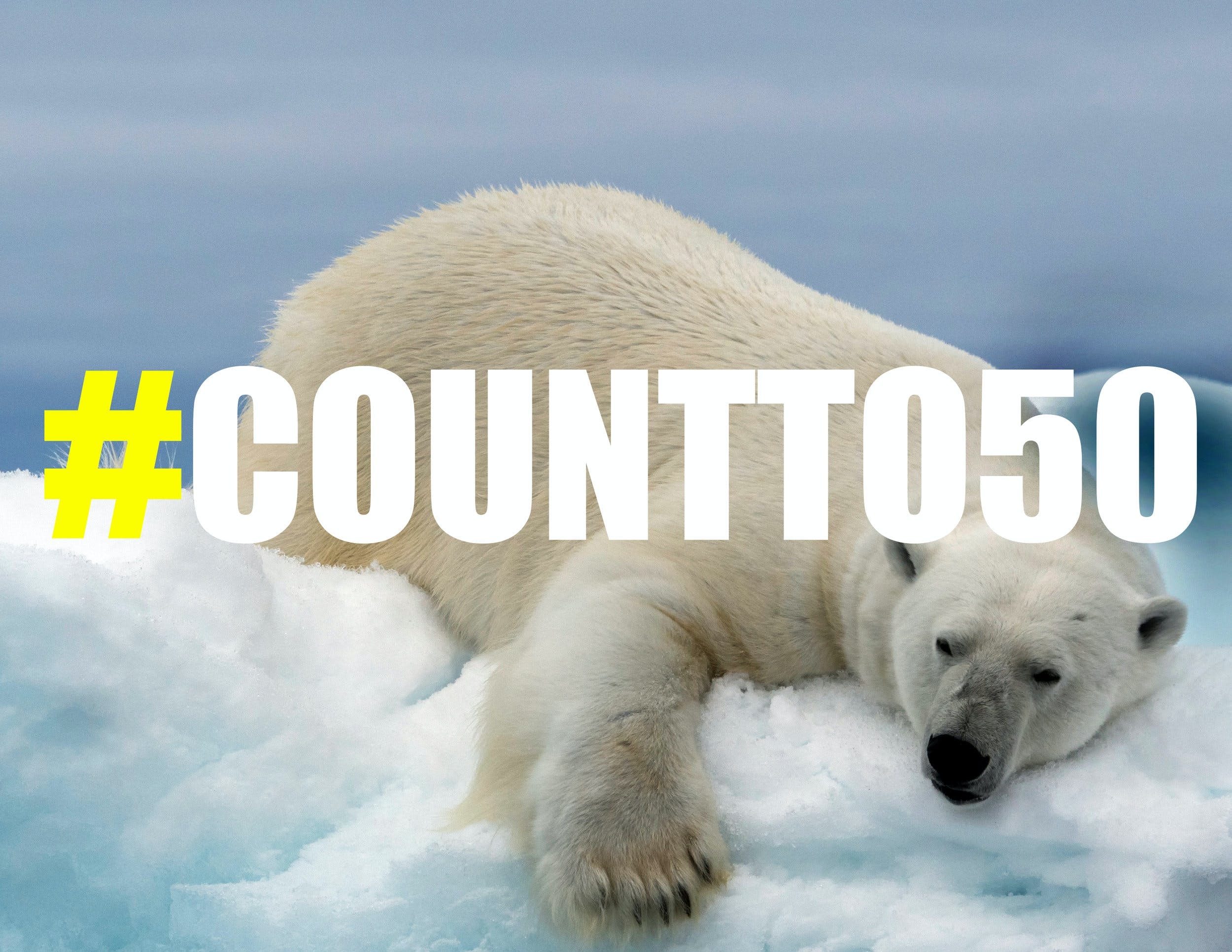 Join the Count to 50 Campaign