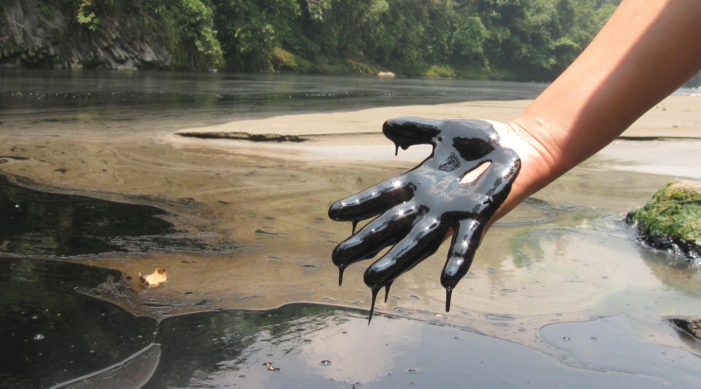 Take Action to End Amazon Crude