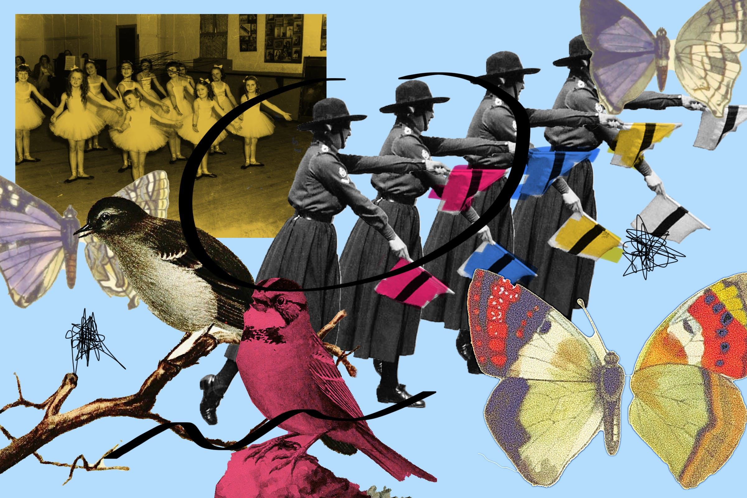 A photo collage combining butterflies, mockingbirds, and semaphore signaling