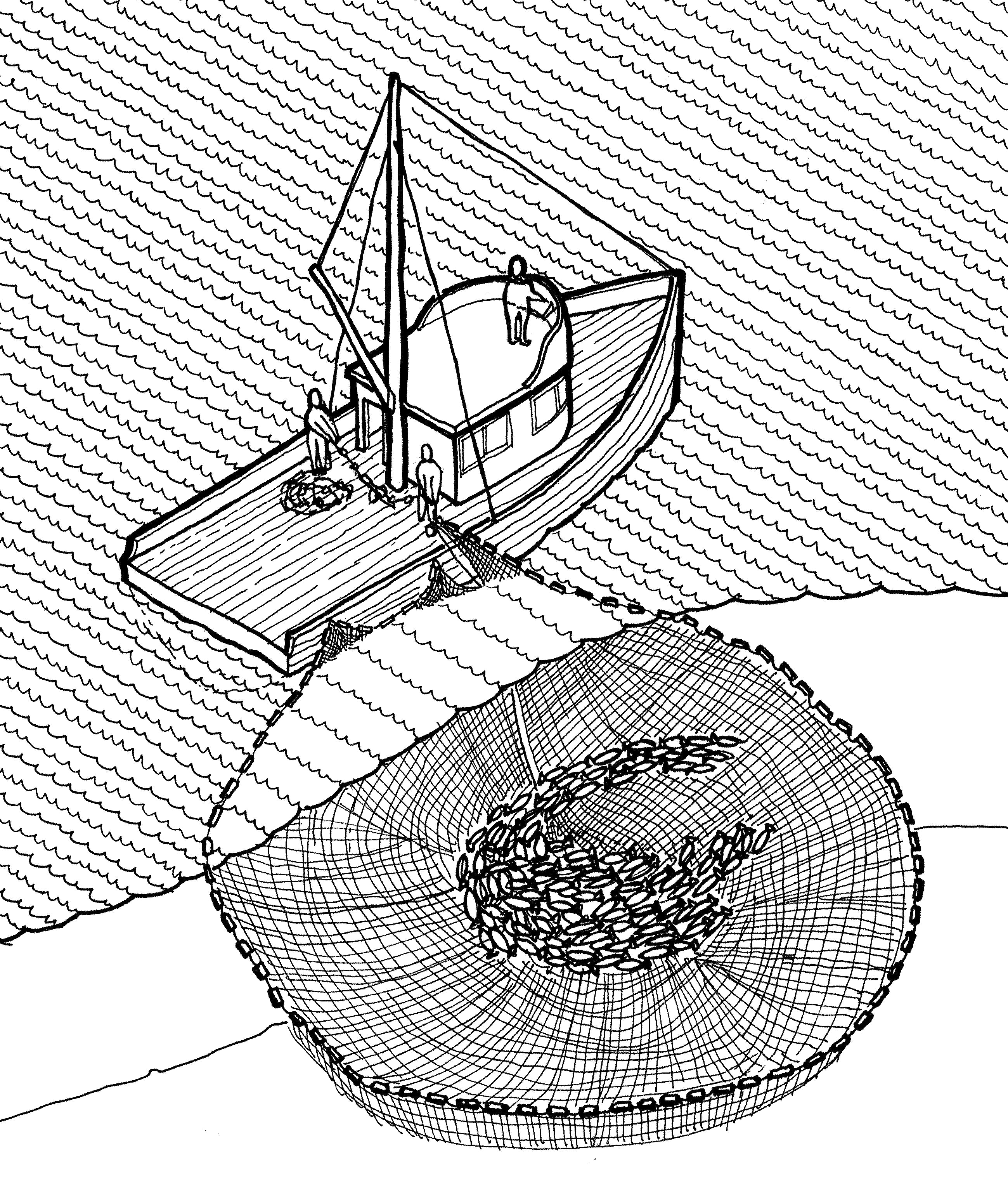 An illustration of the purse seine fishing technique, which casting a net in front of the path of a school of fish and then closing the bottom after they've entered.
